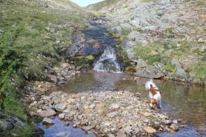 virkistävä puro tunturietapilla