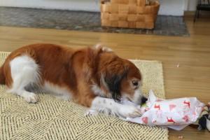 Kelmi avaa lahjapakettia