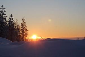 matkalla Rovaniemeltä mökille Kuusamoon. Aurinko pilkistää horisontissa